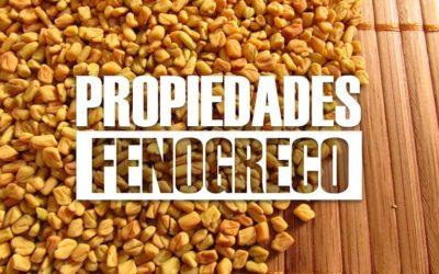 El fenogreco es una de las especies vegetales con más propiedades medicinales.