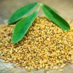 ¿Donde comprar fenogreco en semillas, harina o capsulas en Lima Peru?